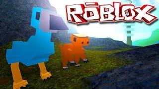 """Dinosaur Simulator """"Roblox"""" (Gameplay/EN)-The Little Dinosaur """"Stegoceras"""" (#15)"""