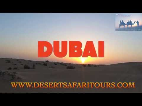 Dubai Desert Safari with Camel Trekking and Quad Biking