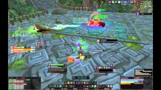 World of Warcraft ⚔ Zul Aman Akilzon Guide Deutsch