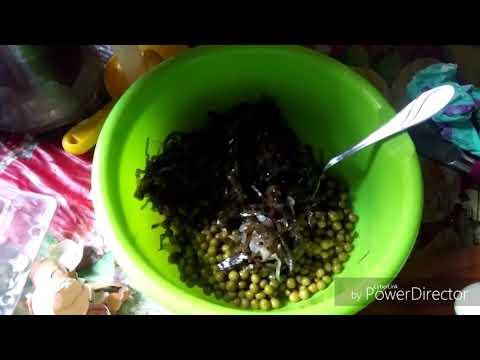 Ешь и худей/ Салат из морской капусты