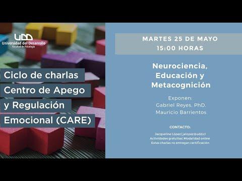 Charla CARE: Neurociencia, Educación y Metacognición
