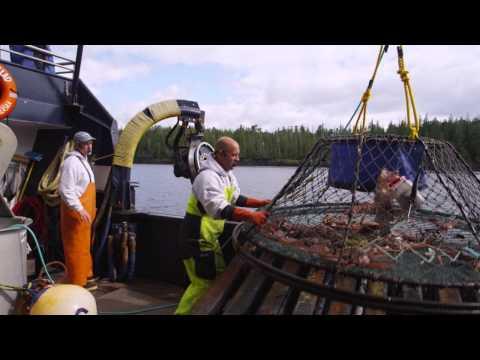 Celebrity Cruises Bering Sea Crab Fisherman's Tour, Ketchikan Alaska