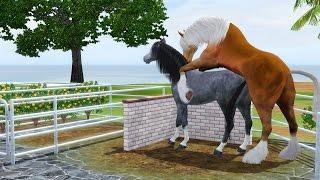 Horse breeding Sims 3