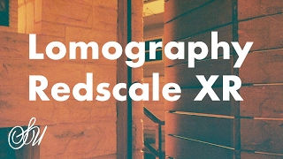 Lomography Redscale XR Review