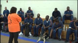 Inmates Train Shelter Dogs