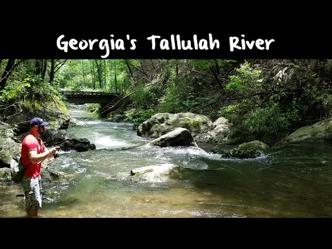 Trout Fishing Georgia's Tallulah River