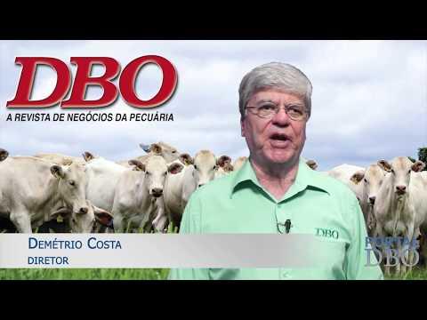 Fazenda com rentabilidade próxima de R$ 500/ha é capa da DBO de março