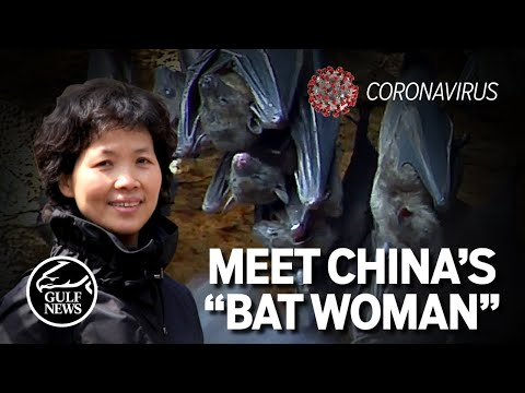 "Meet China's ""Bat woman"" Coronavirus expert at Wuhan Institute of virology"