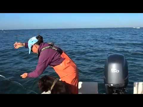 Rip Goes Fishing