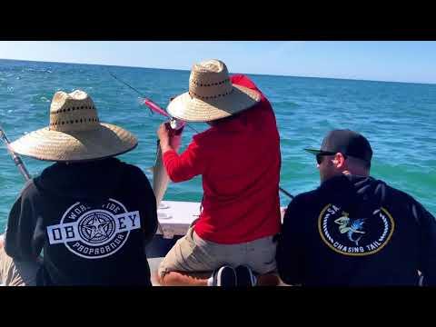 Fishing San Felipe