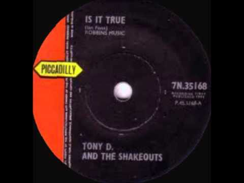 Tony D And The Shakeouts Is It True