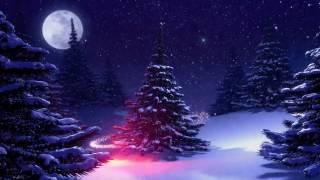 ♛Очень красивая ёлка, Рождество, футаж, скачать бесплатно HD 1