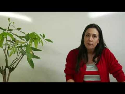 Public Speaking: Giving a Great Speech : Public Speaking Tips: Voice Inflection