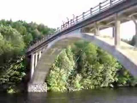 Viforsenbron