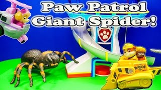 PAW PATROL Nickelodeon Paw Patrol & The Giant Spider a Paw Patrol Video Parody