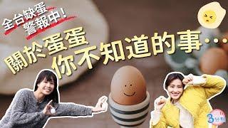 【JOIN三分熟】⚠全台缺蛋警報:關於蛋蛋 你不知道的事…