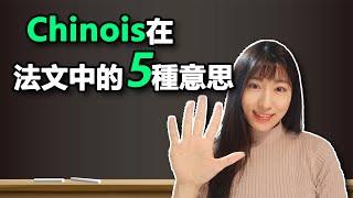 """""""中國人""""在法文中的5種意思,法語口語課堂#3"""