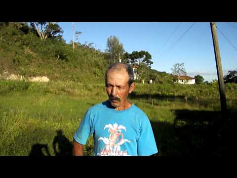 Farmstay in Brazil - Manuelzinho explains how he saves animals bited by snakes