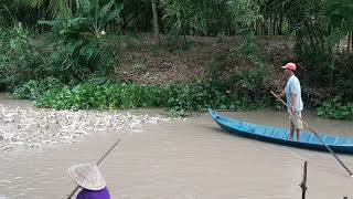 Khoảnh khắc quê hương Việt Nam
