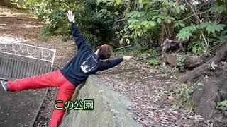 散歩時に撮り溜めた2歳甲斐犬ハルヱの石垣ジャンプ。しかし真の主役は1...
