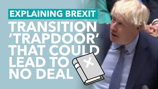 The Problem with WAB's Transition Period - Brexit Explained