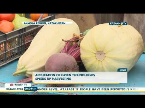 Application of green technologies speeds up harvesting - Kazakh TV