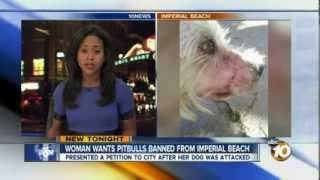 Woman wants Pit Bulls banned along Imperial Beach shoreline, California