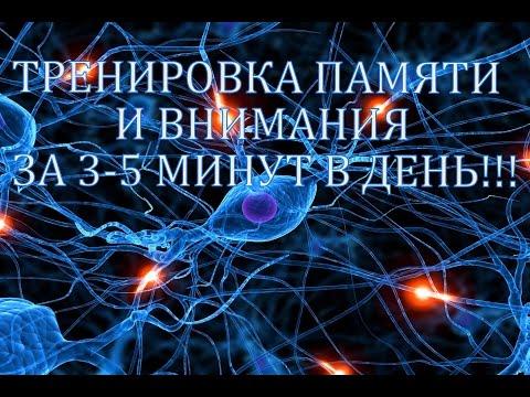 Как развивать память. Тренировка памяти и внимания.