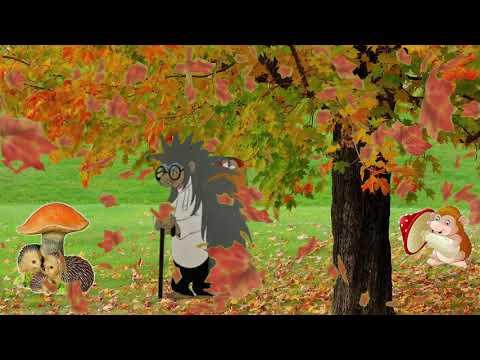 Осенний футаж в лесу
