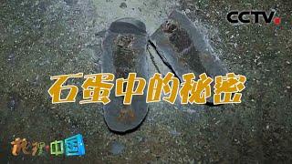 《地理·中国》 20210110 不可思议的石头·石蛋中的秘密  CCTV科教 - YouTube