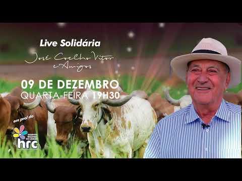 LEILÃO LIVE SOLIDARIA 09 12 20 - REMATE WEB