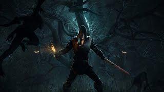 The Witcher 3 Wild Hunt, часть 12