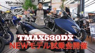TMAX 530 DX