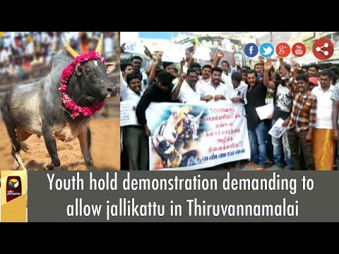 Youth hold demonstration demanding to allow jallikattu in Thiruvannamalai