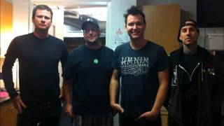 blink-182's Sonic Boom 2013 interview