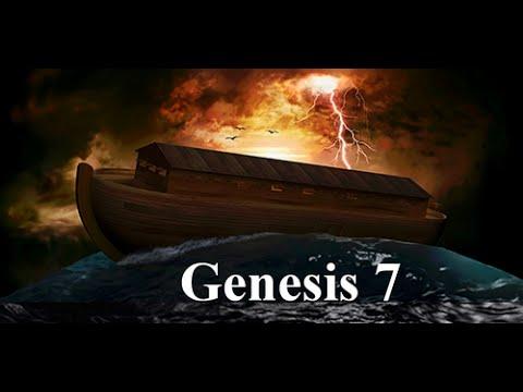 VIDEO BIBLE - GENESIS 7 ~ Noah