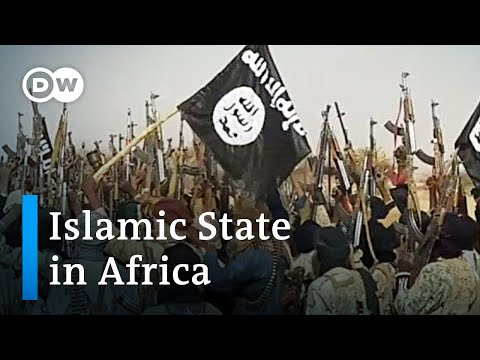Over 70 killed in Niger militant attack | DW News