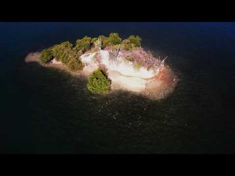 Drone Mapping of Coral Reefs