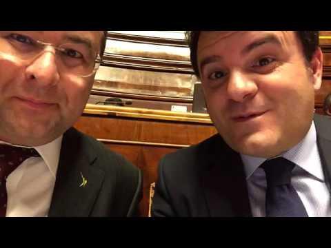 In diretta dal parlamento pd e m5s sono la stessa cosa for Parlamento in diretta