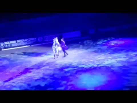 Action horces at hoys (horse of the year show) 2017