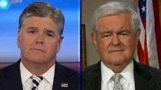 Gingrich  Elite media are in a frenzy to undermine Trump