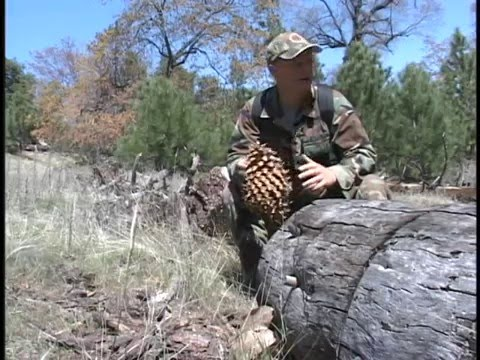 Part 1 Of 2 - SoCal Turkey Hunt, Rattlesnakes, Skeet Shooting - The Pendleton Sportsman - May 2004