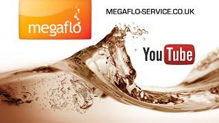 Megaflow 1