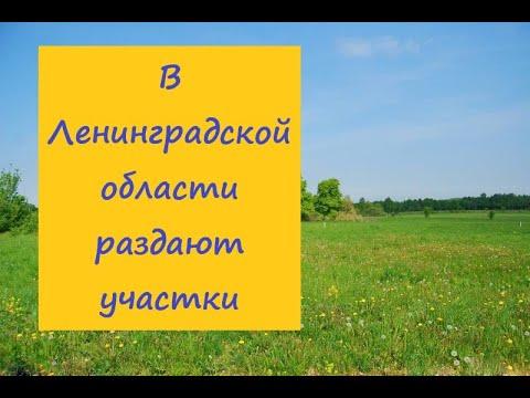Питер Раздают земельные участки в Ленинградской области