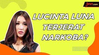 Lucinta Luna Ditangkap Polisi Gara-Gara Narkoba - JPNN.com
