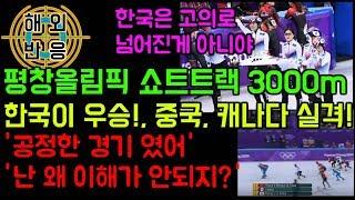 평창 올림픽 쇼트 트랙 3000m 한국 금메달. 캐나다, 중국은 실격