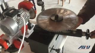 Gear Grinding Machine/Circular Saw Blade Grinder