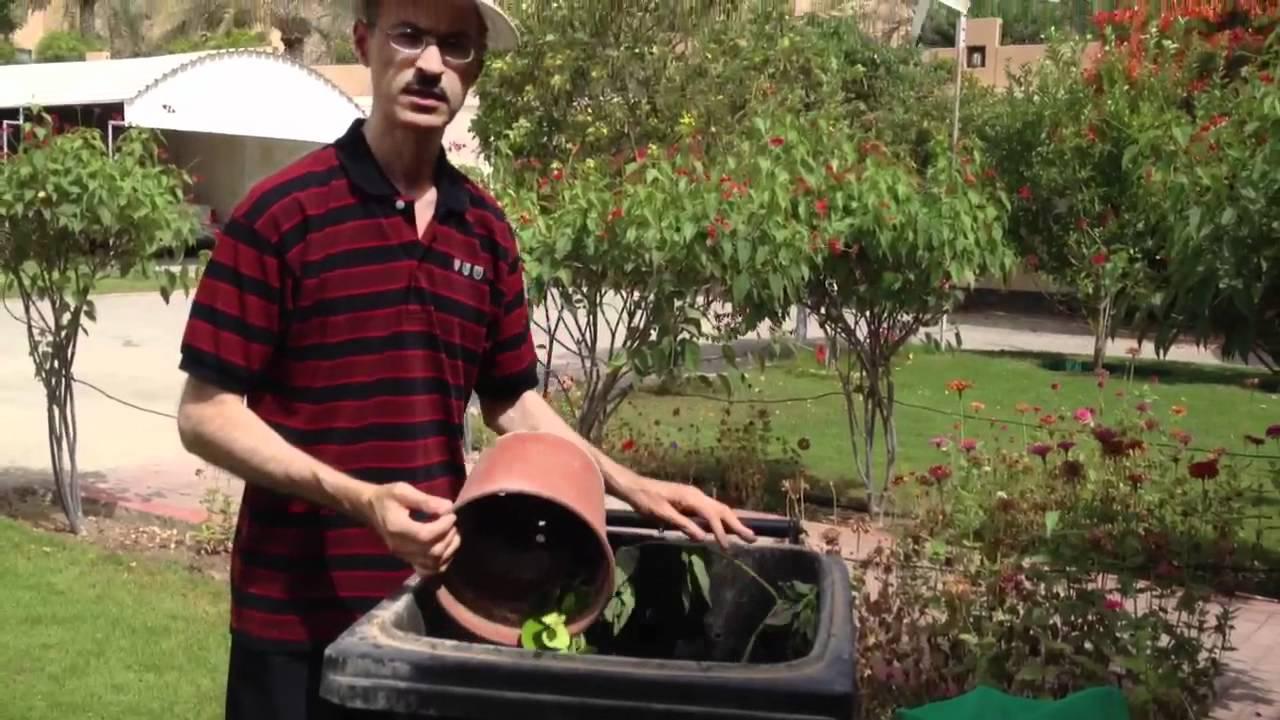 كيف تصنع الكومبوست How to make compost