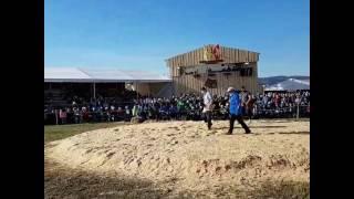 Thurgauer Kantonales Schwingfest 2017 - Rundblick aus der Arena