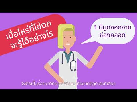 การตกไข่ คืออะไร สัมพันธ์กับรอบเดือนและการตั้งครรภ์อย่างไร | KonThong Channel